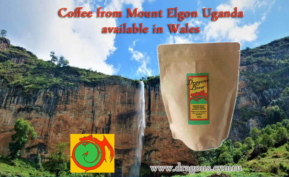 mt elgon cofee and honey co-operative